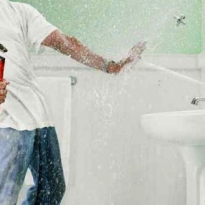 Tricks to Avoid Plumbing Problems